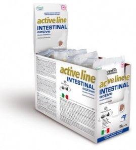 Intestinal Active cat 454г