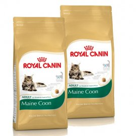 MAINE COON 31 10кг