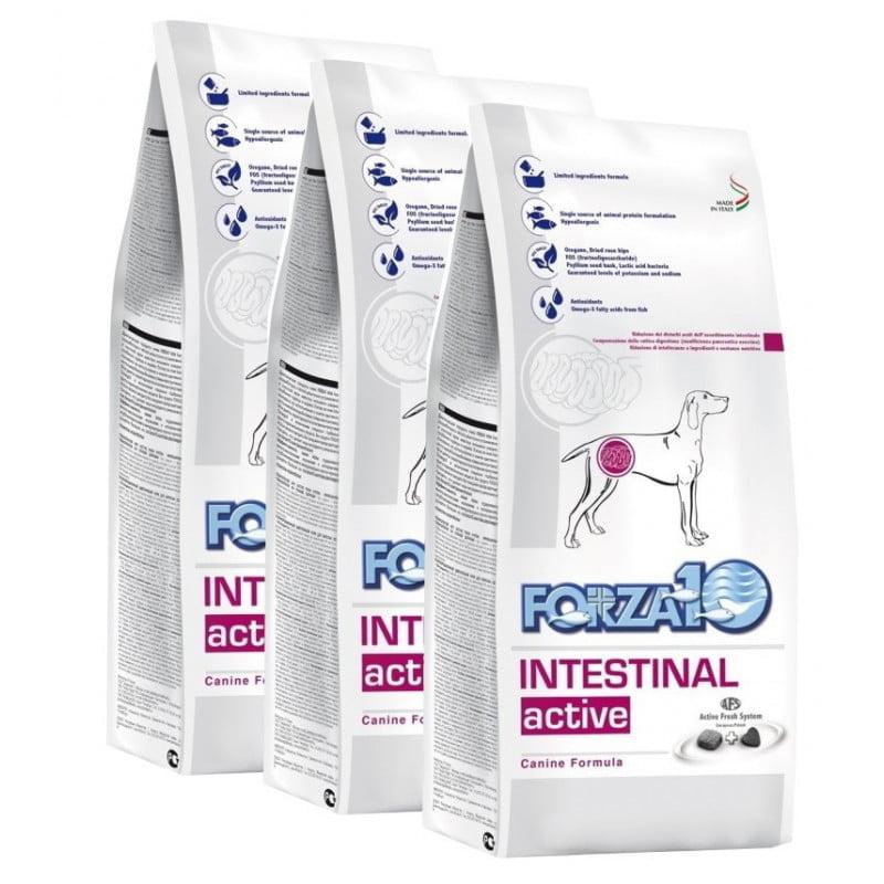 Intestinal Active 10кг