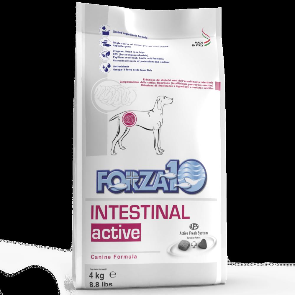 Intestinal Active 4кг